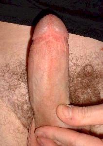 callboy kiel low und tight beschnitten
