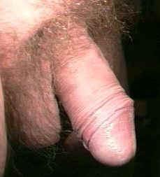 Penis unbeschnittener unbeschnittener penis